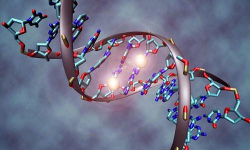 Gen di truyền góp phần rất lớn vào nguy cơ gây ung thư tinh hoàn