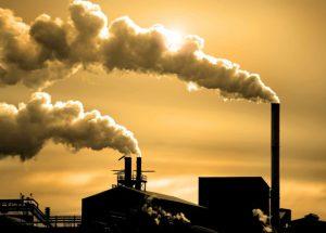 Ô nhiễm môi trường là nguyên nhân gây ung thư hạch.
