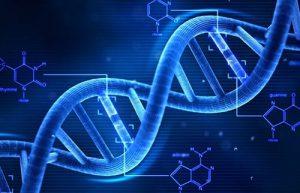 Gen di truyền chiếm 50% trong các nguy cơ mắc bệnh