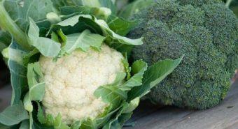 Ăn súp lơ xanh giảm nguy cơ ung thư tuyến tiền liệt