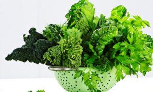 Tăng cường bổ sung rau xanh để phòng ngừa trĩ