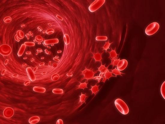 Bệnh ung thư máu là căn bệnh ung thư ác tính