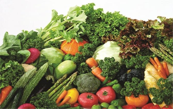 Bệnh nhân sau điều trị u não nên ăn nhiều rau xanh