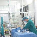 Cứu sống bệnh nhi sốc phản vệ khi điều trị viêm phổi