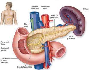 Hình ảnh bệnh ung thư tuyến tụy
