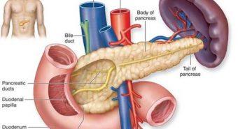 Dấu hiệu cảnh báo sớm căn bệnh ung thư tuyến tụy