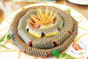 Thịt rắn có thể chữa được ung thư tử cung?
