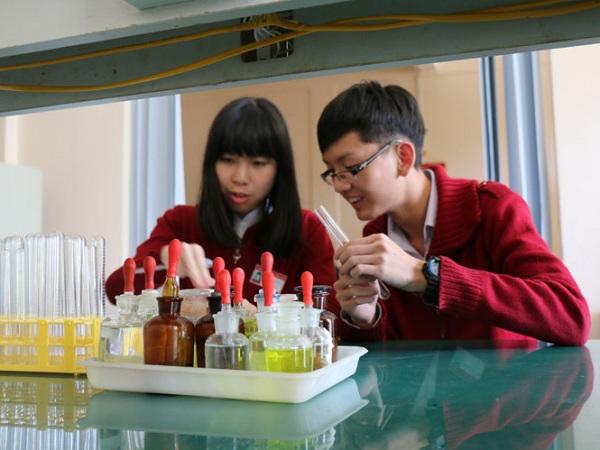 Hai em Minh Châu và Đức Chính trong nghiên cứu phương pháp điều trị ung thư