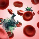 Phương pháp điều trị ung thư máu được áp dụng hiện nay