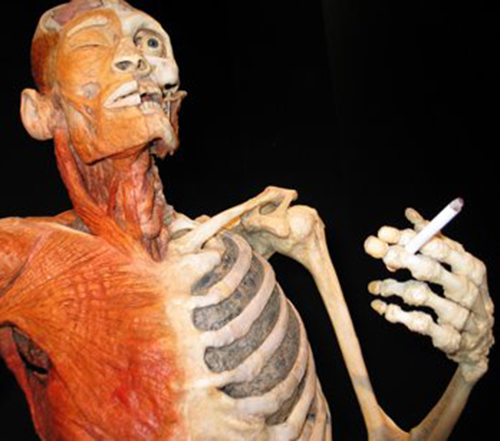 Thuốc lá ảnh hưởng tới sức khỏe rất lớn