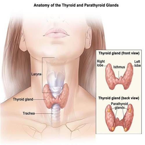 Không nên chủ quan với các dấu hiệu báo trước ung thư vòm họng