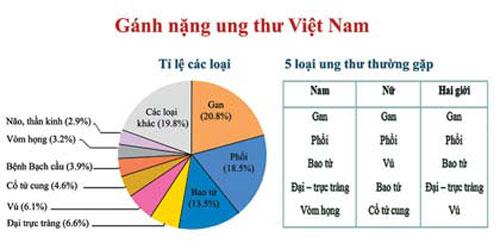 Gánh nặng ung thư ở Việt Nam