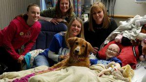 chiến đấu với ung thư vì thần tượng chú chó