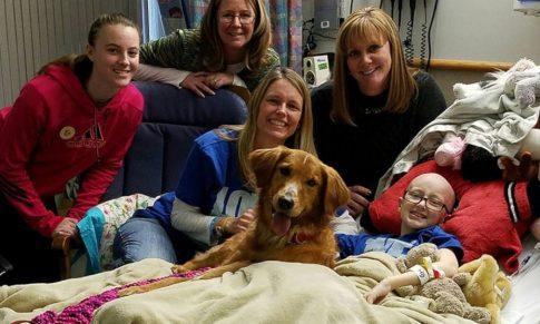 Cô bé quyết tâm chiến đấu với ung thư vì thần tượng chú chó trong phim