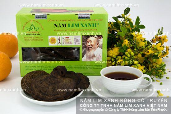 Cách sử dụng nấm lim xanh Quảng Nam