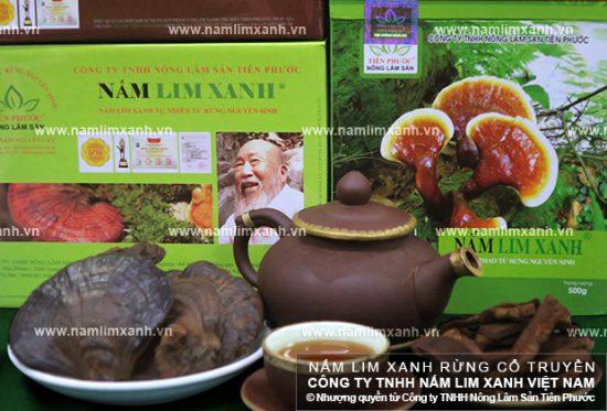 Chiến thắng bệnh ung thư nhờ uống Nấm Lim Xanh