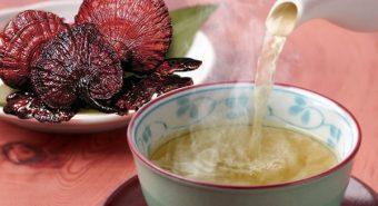 Hướng dẫn cách nấu nấm lim xanh đạt hiệu quả cao