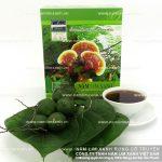 Nấm lim xanh hỗ trợ điều trị viêm đại tràng