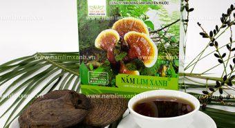 Nấm lim xanh mọc ở đâu nhiều nhất tại Việt Nam gian nan tìm kiếm