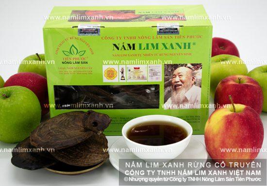 Đẩy lùi quá trình lão hóa với nấm lim xanh Quảng Nam