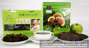 Nấm lim xanh Quảng Nam có tác dụng gì và cách dùng nấm lim xanh