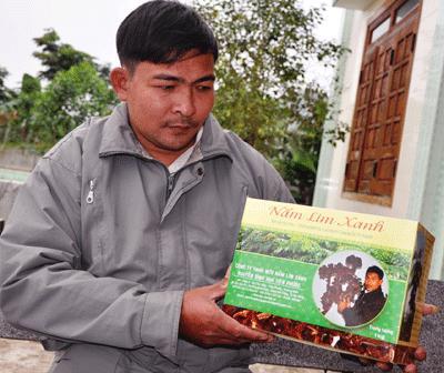 Phơi bày sự thật về công ty nấm lim xanh Nguyễn Đình Hoa
