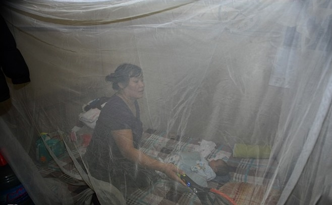 Phòng chống sốt xuất huyết