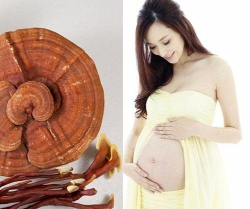 Nhiều phụ nữ thắc mắc có thai uống nấm lim xanh được không?
