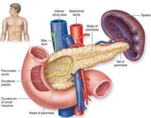 Phương pháp chẩn đoán ung thư tụy ngoại tiết