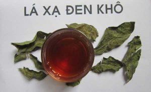 Uống lá cây xạ đen có tác dụng gì với sức khỏe.