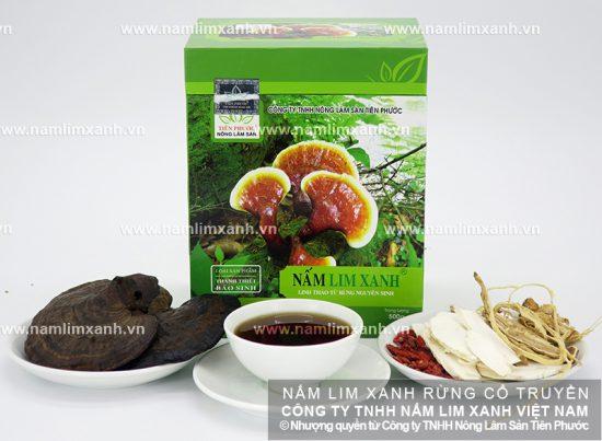 Cách ngâm rượu nấm lim rừng tự nhiên Quảng Nam