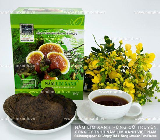Phương pháp chế biến nấm lim xanh rừng và cách sắc nấm lim xanh