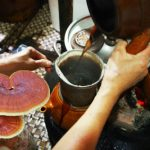 Cách sử dụng nấm lim xanh tự nhiên sắc nấu, ngâm rượu cực tốt