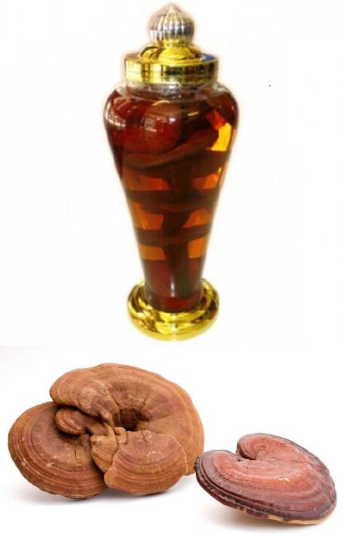 Cách sử dụng nấm lim xanh hiệu quả giúp tăng cường sinh lực phái mạnh là ngâm rượu.