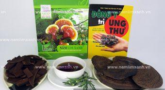 Cách dùng nấm lim xanh hiệu quả. Giá nấm lim rừng bao nhiêu 1kg?