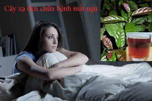 Tác dụng của cây xạ đen Hòa Bình giúp chữa chứng mất ngủ.