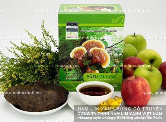 Công dụng của nấm lim xanh và các dược chất trong nấm lim xanh rừng