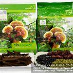 Giá 1kg nấm lim xanh bao nhiêu tiền? Giá bán nấm lim rừng chuẩn