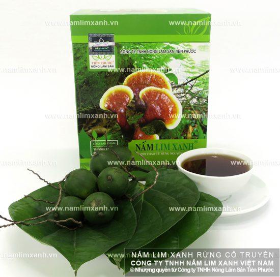 Hình ảnh vềnấm lim xanh Việt Nam tự nhiên chính hãng