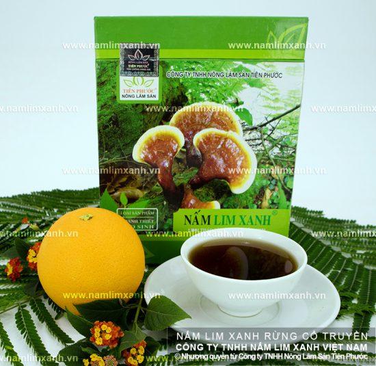Nấm lim xanh Lào có tác dụng chữa bệnh béo phì, tiểu đường, huyết áp