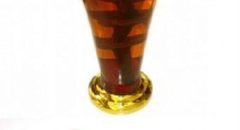 Nấm lim xanh ngâm rượu có tốt không và sơ chế nấm lim ngâm rượu