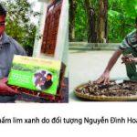 Nấm lim xanh Nguyễn Đình Hoa: Tác hại khi dùng nấm lim chưa sơ chế