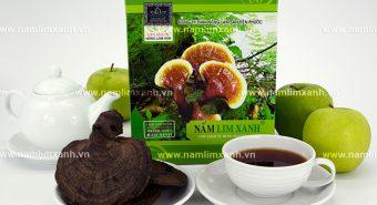 Nấm lim xanh Quảng Ninh bao nhiêu tiền 1kg với địa chỉ bán nấm lim