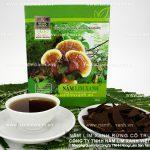 Mua nấm lim xanh ở Hà Nội và cây nấm lim xanh giá bao nhiêu 1kg?