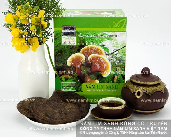 Nấm lim xanh rừng tự nhiên chất lượng cao