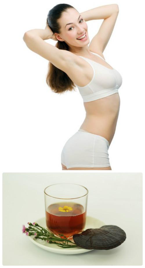 Nấm lim xanh tác dụng gì cho việc giảm cân? Nhiều người dùng quan tâm đến vấn đề này