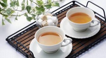 Trà tam thất xạ đen có tác dụng gì? Mua trà tam thất xạ đen ở đâu?