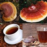 Uống nấm lim xanh như thế nào? Cách sử dụng nấm lim rừng tự nhiên