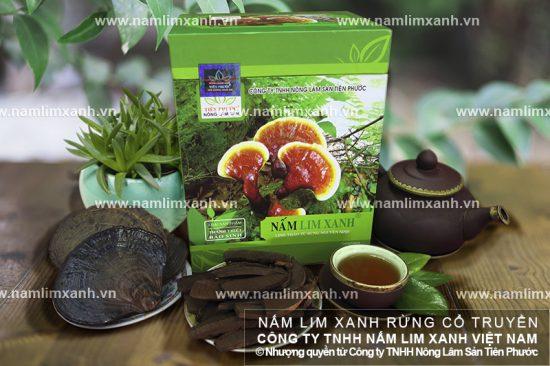 Uống nước nấm lim xanh rừng Quảng Nam cần lưu ý gì?