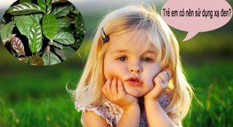 Xạ đen Hòa Bình có tác dụng gì? Trẻ em có nên uống nước lá xạ đen